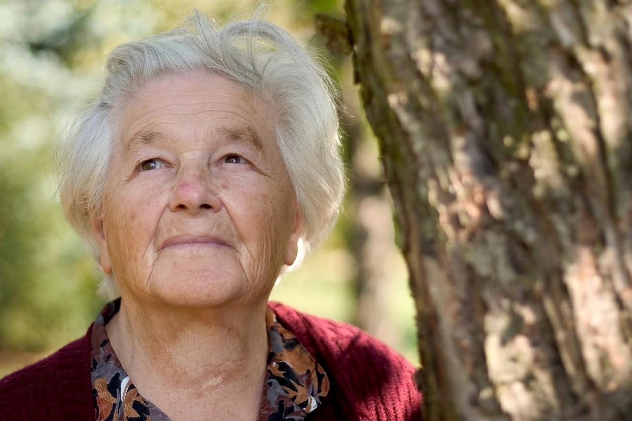 Wie alt werde ich? auf mond-blog.de